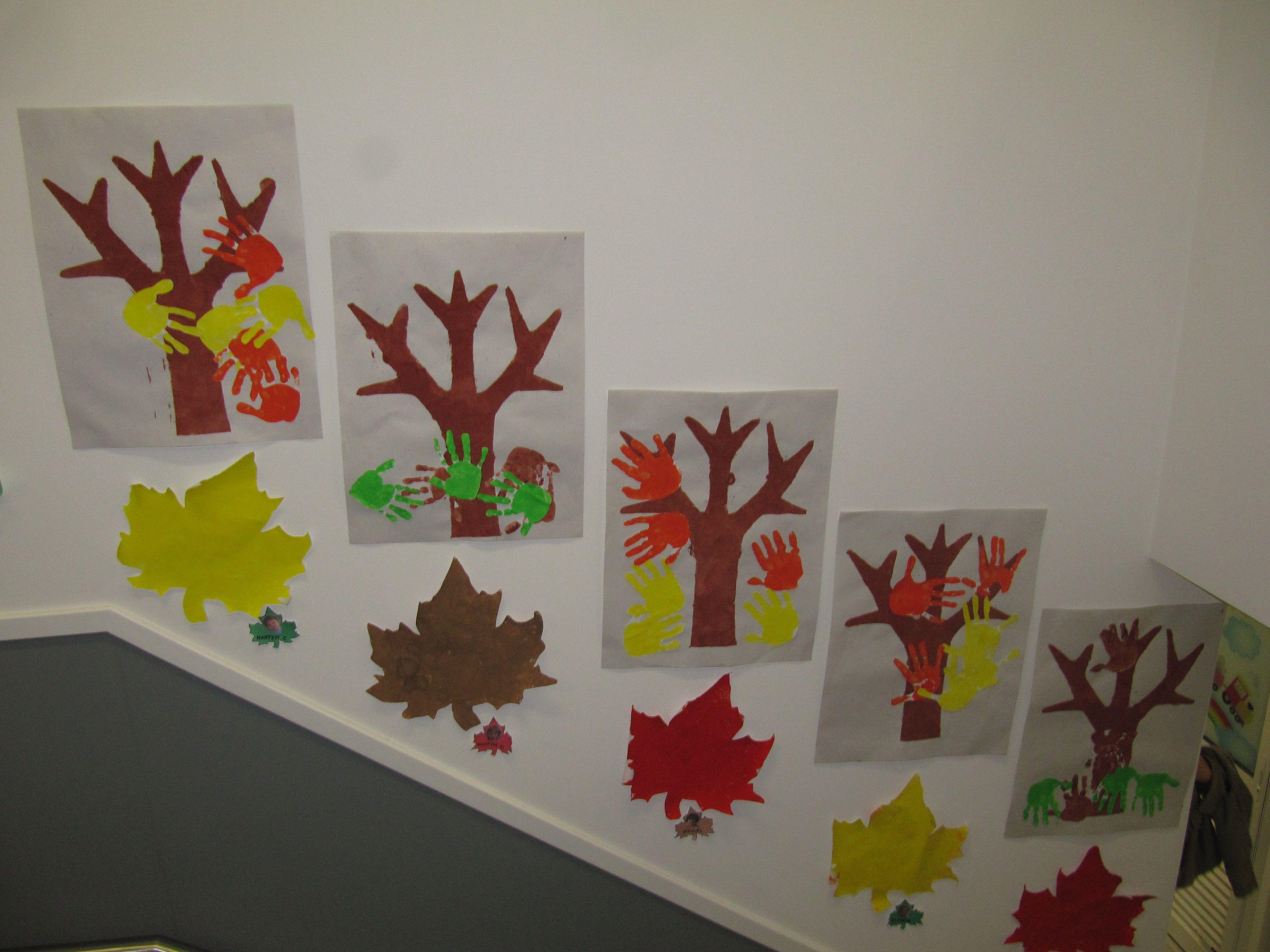 Arvores De Outono E Folhas De Outono