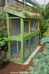 Rabbit hutch with greenroof in small backyard sustainable ...