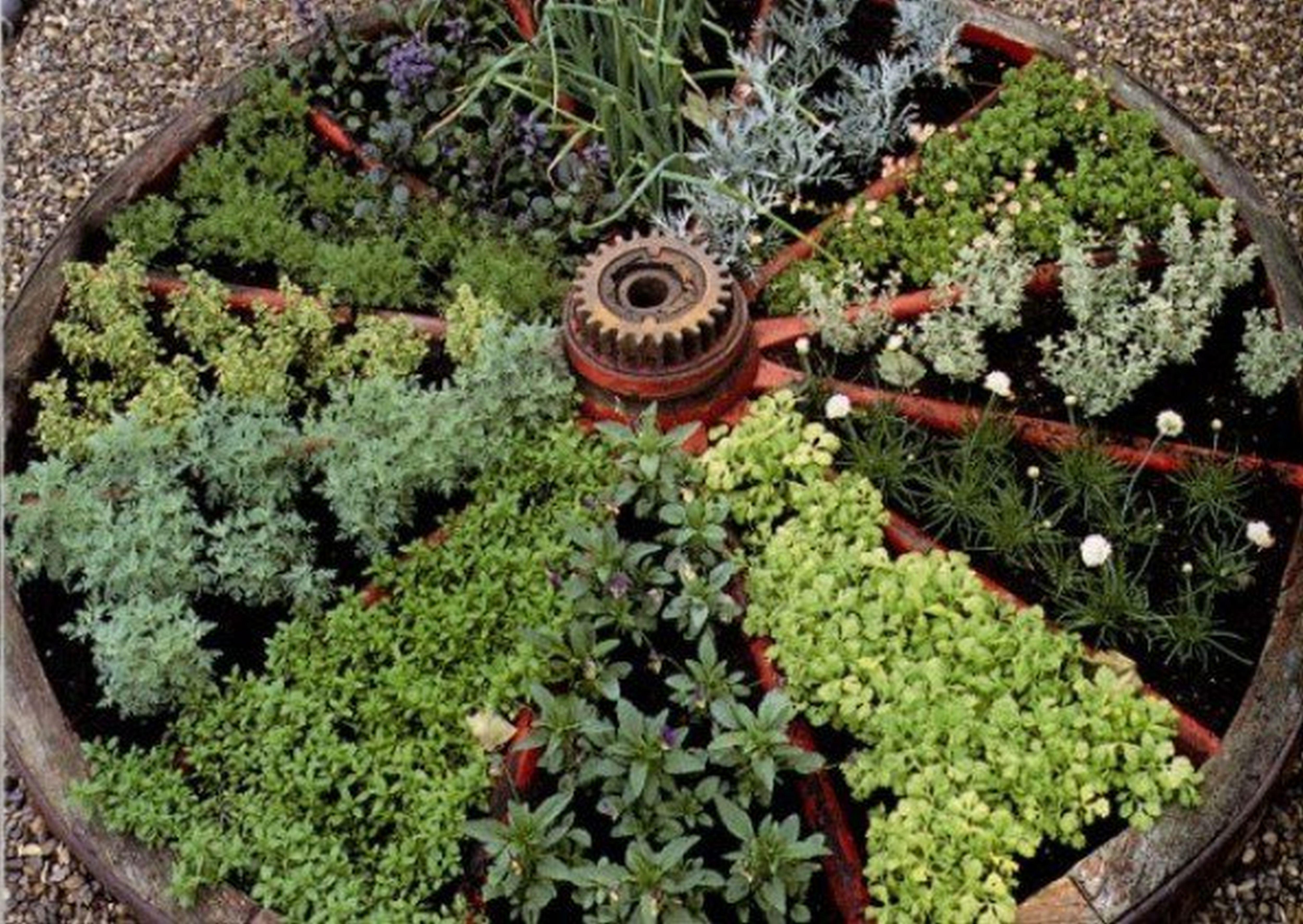 Inexpensive Indoor Herb Garden Ideas Pinterest And Indoor Hanging