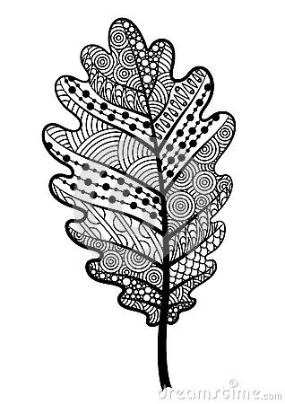 Zentangle Black And White Leaf Of The Tree Oak. Stock