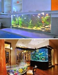 35 Unusual Aquariums and Custom Tropical Fish Tanks for ...