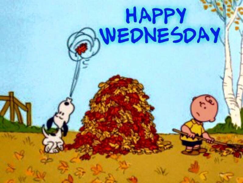 Free Fall Cartoon Wallpaper Fall Snoopy Wednesday Pictures Photos And Images For
