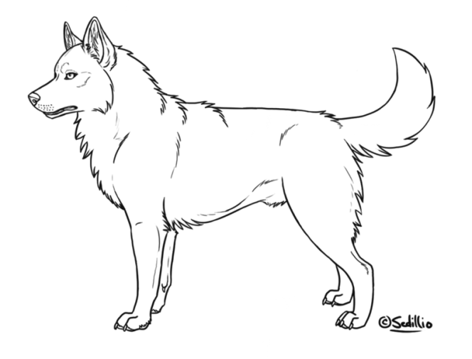 Coloring Page Husky Deviantart More Like Siberian Puppy Lineart By Zabbytabby