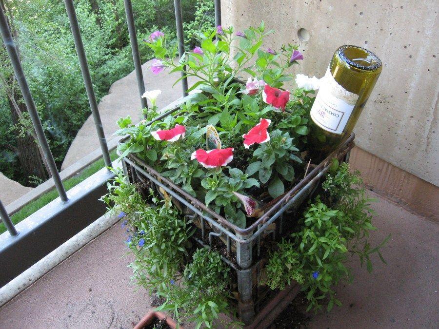 My Milkcrate Balcony Container Garden Gardens Planters And Milk