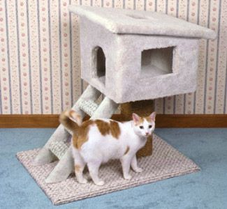 Cat Tree House Wood Plans CAT'S Pinterest Fai Da Te Case