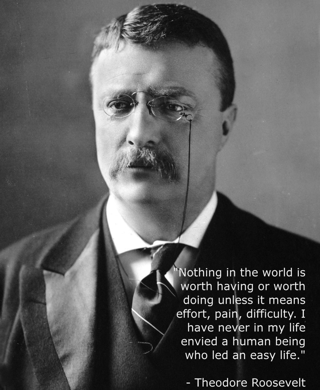Teddy Roosevelt Quotes Teddy Roosevelt Quotes Support Presidential Elections History Picture