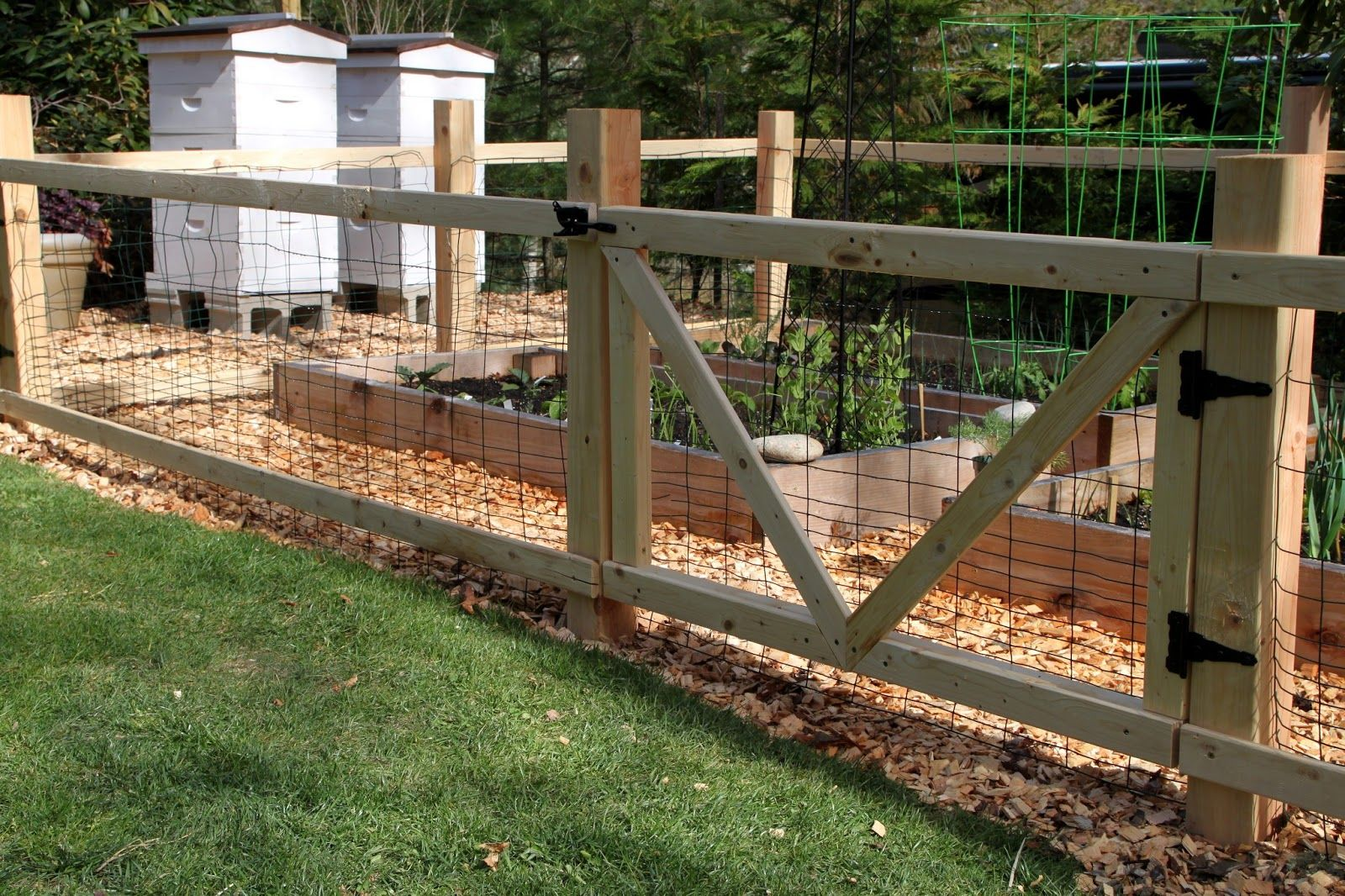 Adorable Vegetable Garden Fencing Ideas Using Wood