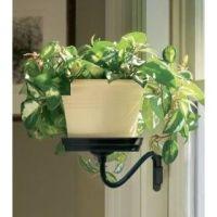 plant sconce black | Home & Garden | Pinterest | Plants ...