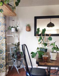 My favorite plant filled interiors on instagram also plants rh pinterest