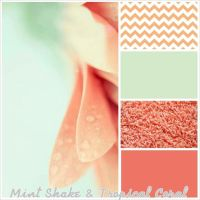 Mint Shake & Tropical Coral. Bathroom Color palette for