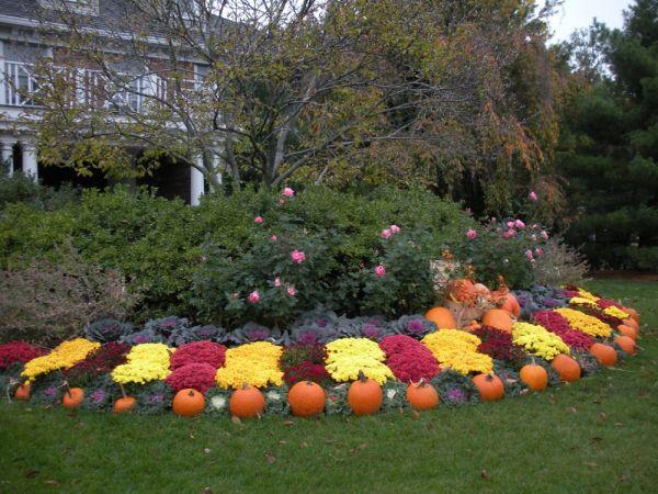 seasonal landscape display fall autumn