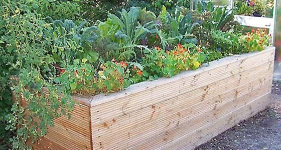 Gemüseanbau Im Hochbeet Garten Ideen Garten Hochbeet Und