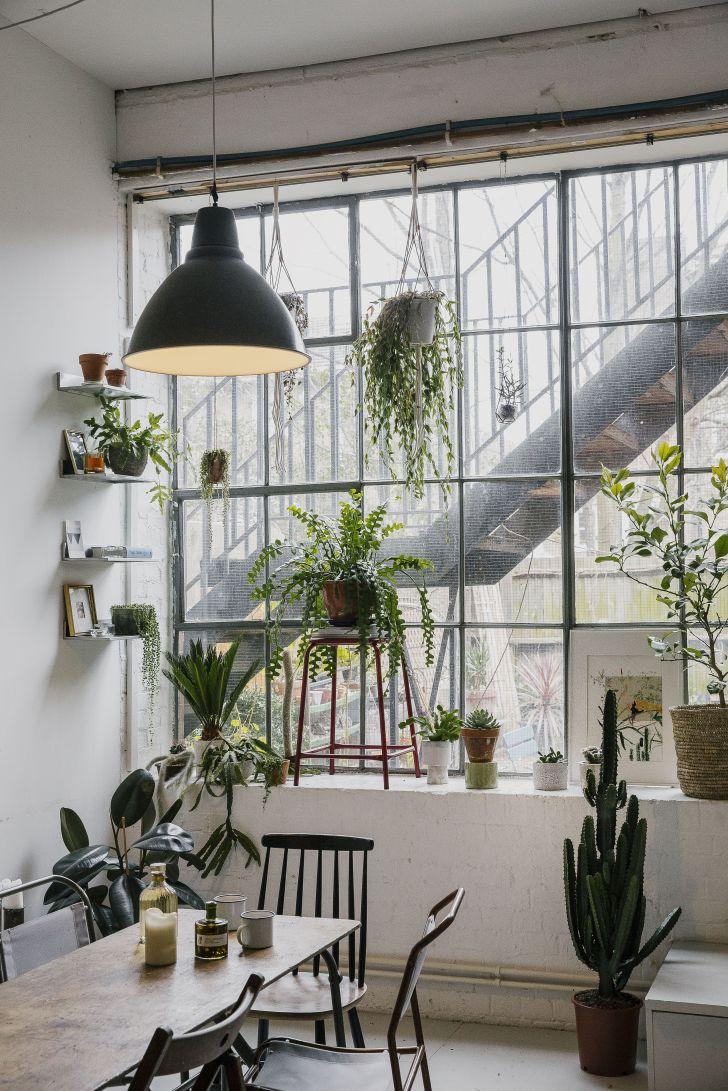 Interior Design: Home Interior Design Blog Uk. Book Review House Of Plants By Caro Langton Rose Ray Wallpaper Home Interior Design Uk For Online Smartphone Hd