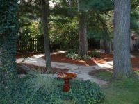 shady backyard | Gardening/Landscaping (other than veggies ...