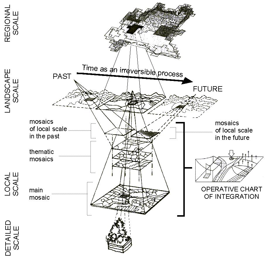Figure 5. The landscape ecotissue: the basic mosaic is