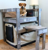 Dog Bunk Bed Idea | Bunk bed, Window and Dog