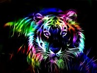Colorful Tiger Wallpaper | wallpaper & screensaver ...