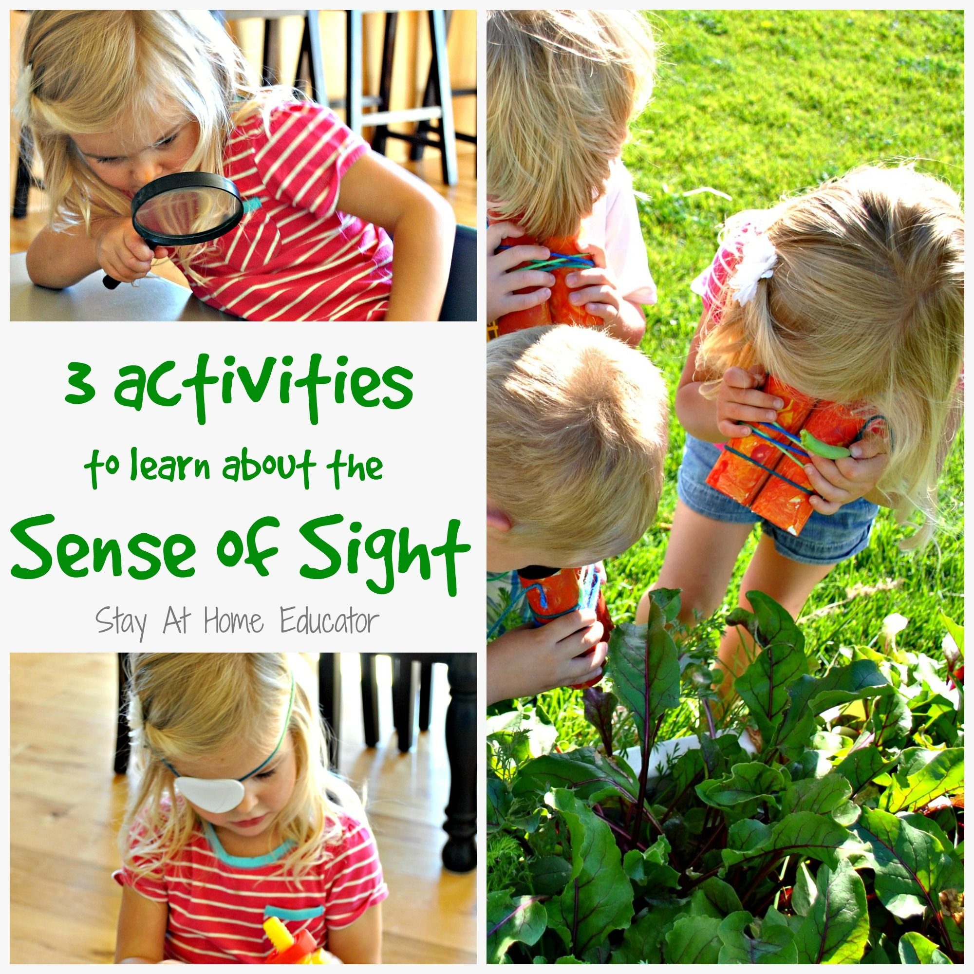 Three Activities To Learn About The Sense Of Sight