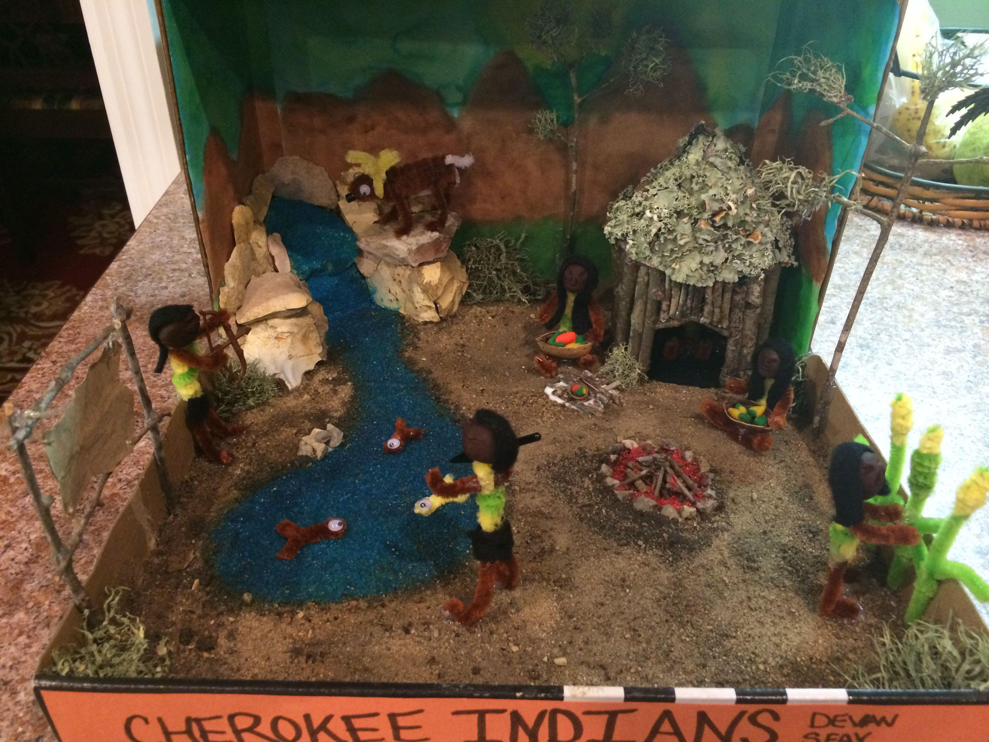 5th Grade Indian Project