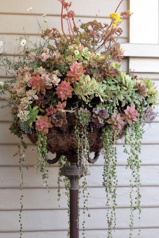 Upcylced Gardening Ideas Upcycling Decor Trends Pinterest