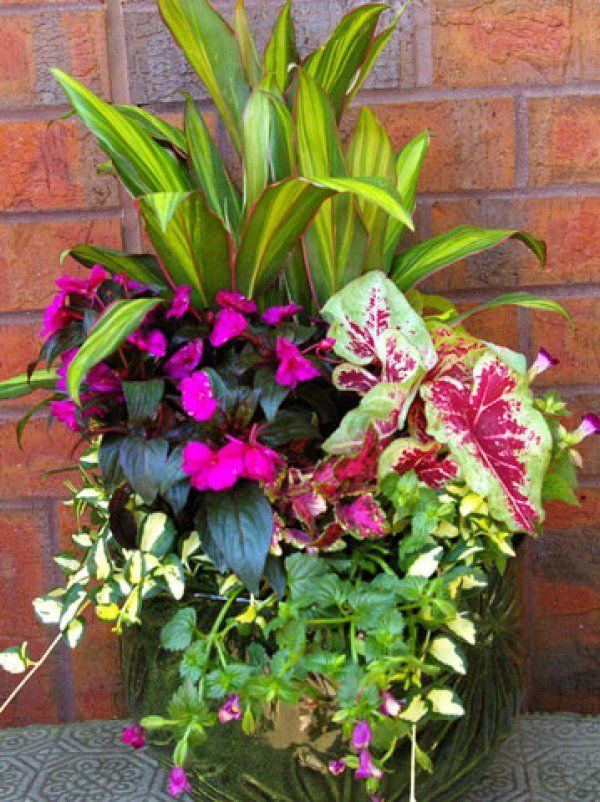Colorful Shade Container Garden Favorite Places & Spaces Garden