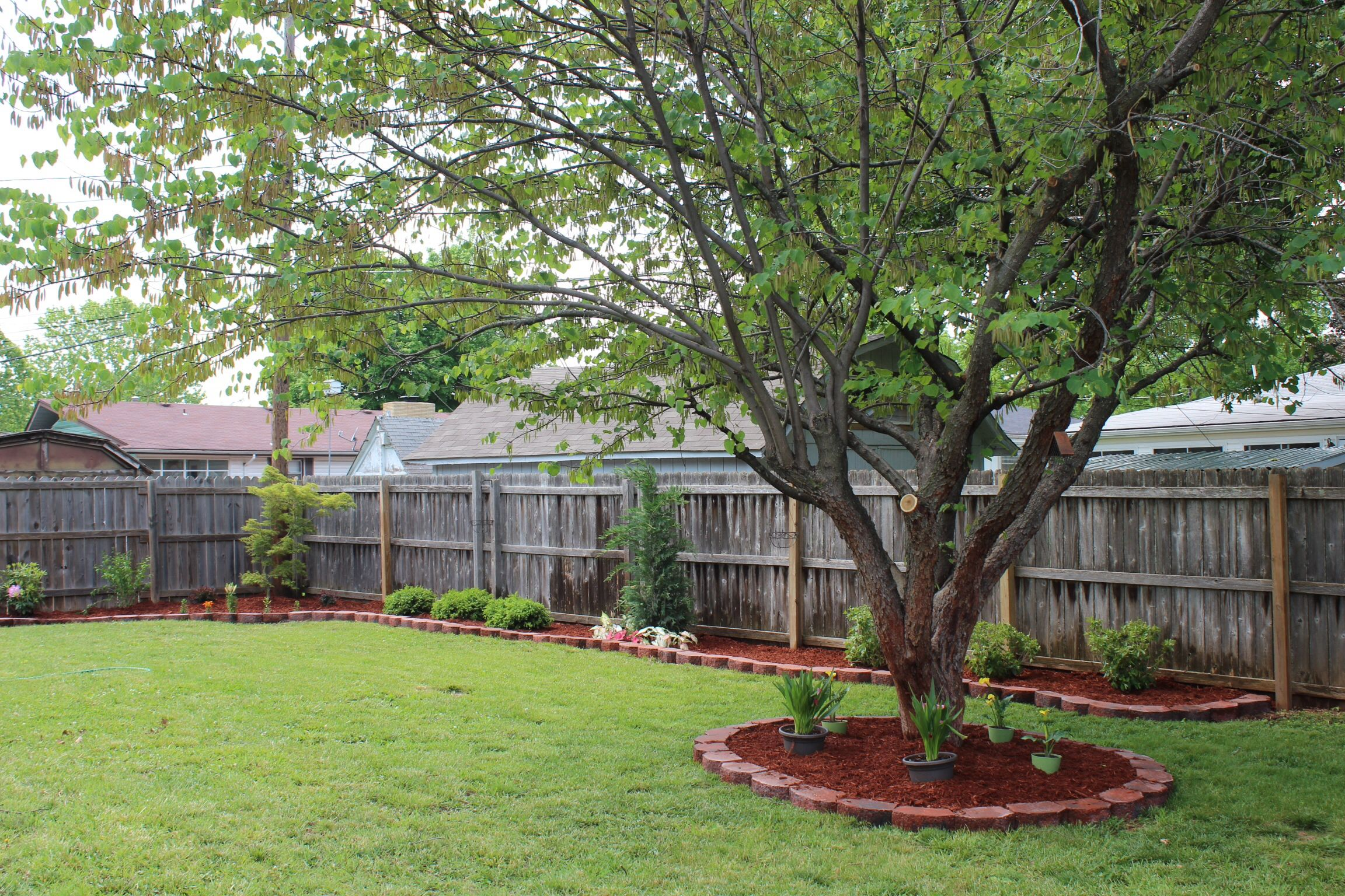 Backyard landscaping next to a privacy fence
