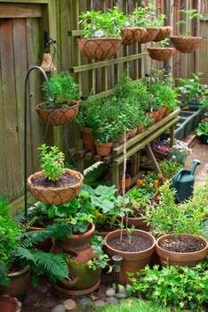 7 Ways To Garden When You Don't Have A Yard Gardens Vegetables
