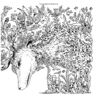 Animorphia: An Extreme Coloring and Search Challenge ...