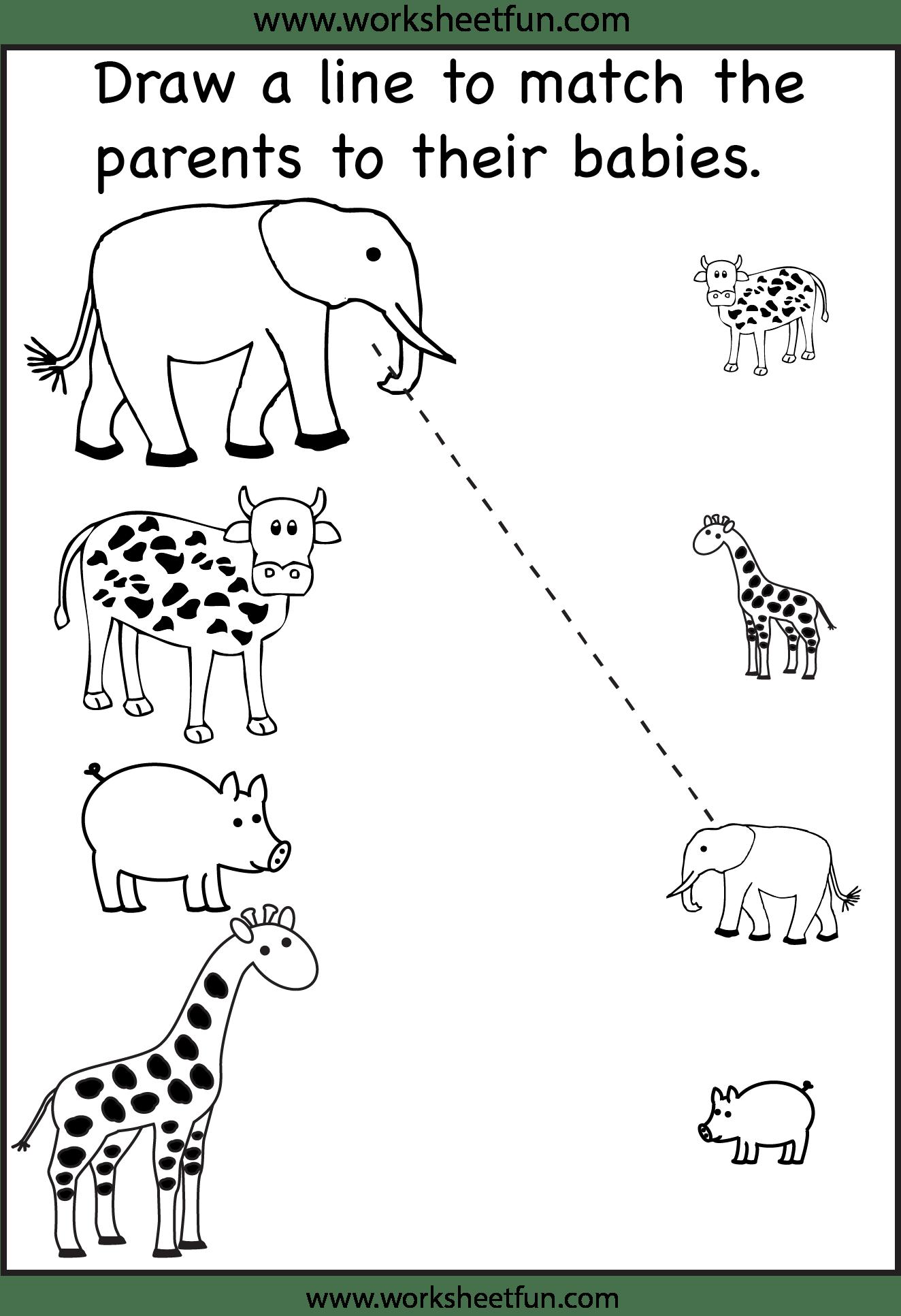 Animalbabyparent21