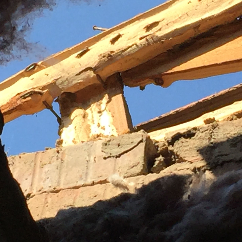 Termite damage to roof beams  Johannesburg  Termite