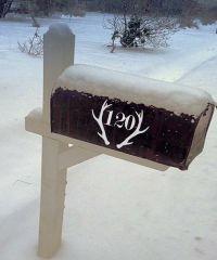 Custom Vinyl Mailbox Decal Deer Antler Monogram by ...