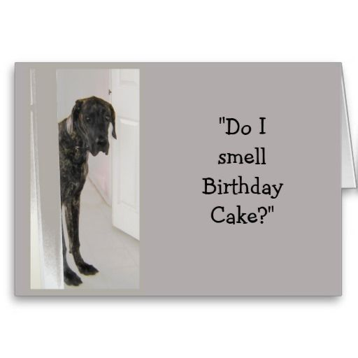 Birthday Great Dane Meme