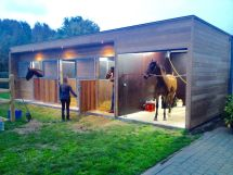 Stall and Barn Horse Stables
