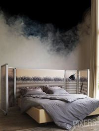 Pixers has thousands of wall murals you can choose from ...