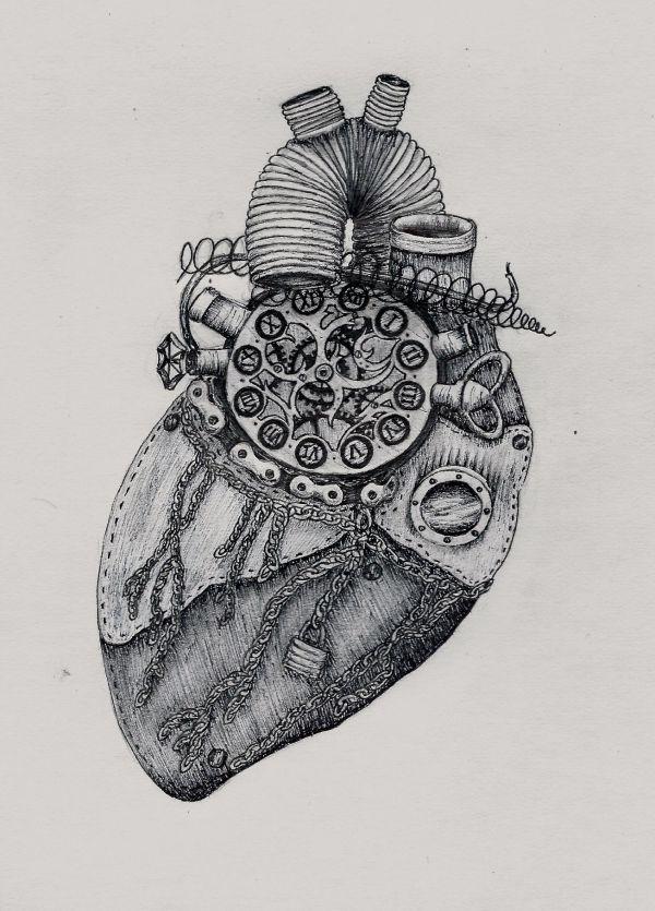Steampunk Anatomical Heart Drawing