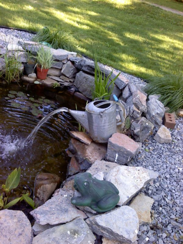 Fish Pond With Watering Fountain Garden