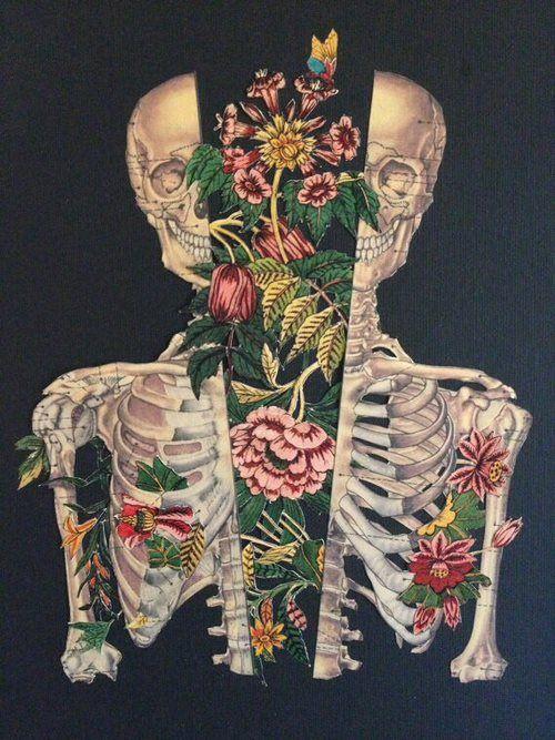 Pretty Skeleton Girl Drawing