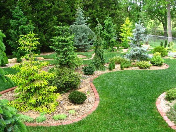 garden web's conifer forum bliss