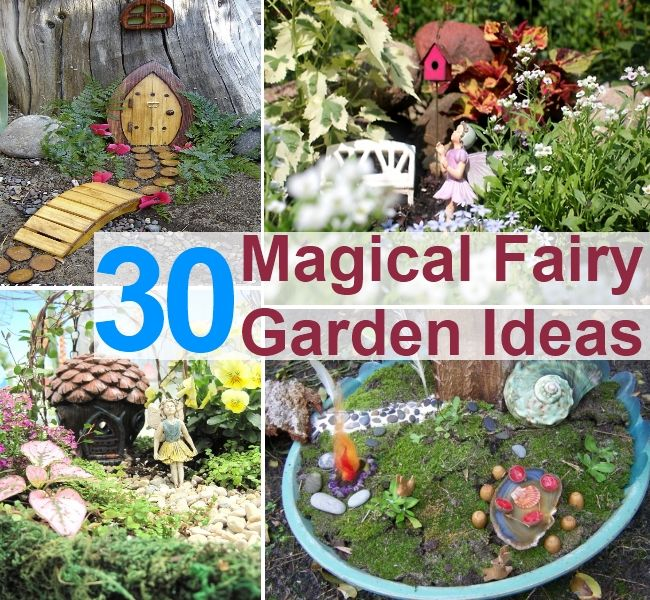DIY Fairy Garden Ideas Best Local Farmers Market And Flea Markets