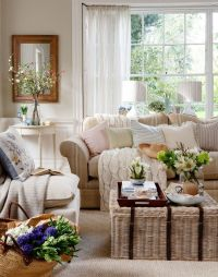 Neutral Traditional Living Room with Wicker Trunk ...