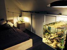 Emma' Bedroom #aquascaping #aquarium Fish Room