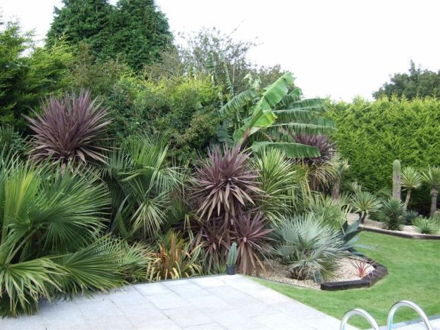 Like The Different Colours Ideas For Full Sun Garden Bed