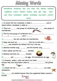 Animal Classification Activity Worksheets | Animal ...