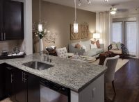 Apartment Living & Dining Room 2nd view....AMLI on Maple ...
