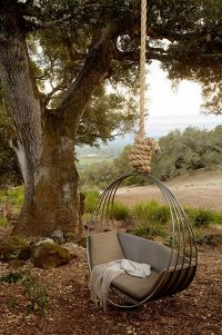 Tree swing. Modern tree sing. Hanging chair on tree ...