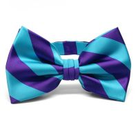 Dark Purple and Turquoise Striped Bow Tie | Wedding Ideas ...