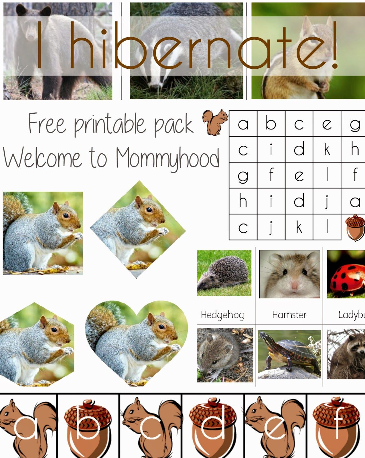 I Hibernate Free Printable Pack From Welcome To