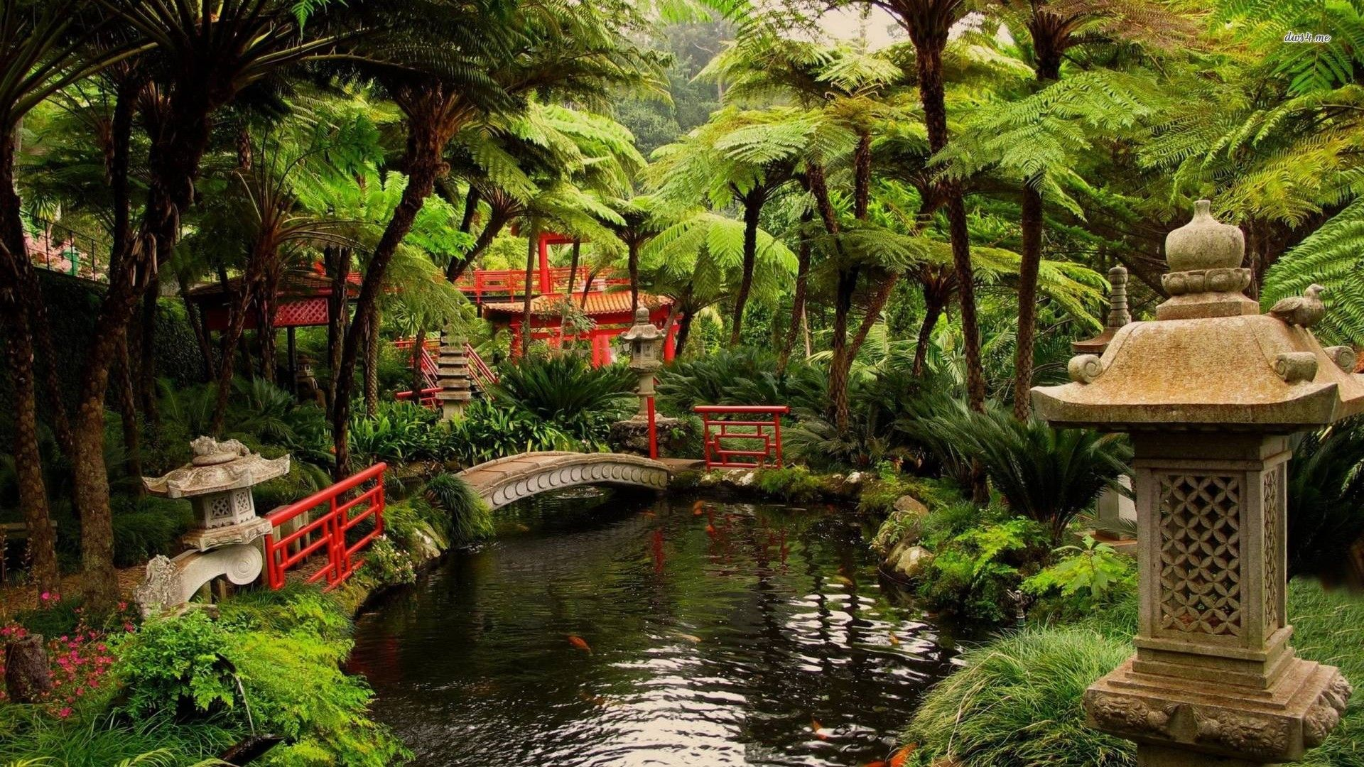 Building Zen Garden