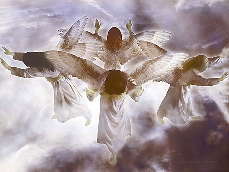 Four Four Back Winds Holding Angels
