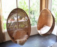 Egg Hanging Seats Hanging Basket Chair Nz Hanging Basket ...